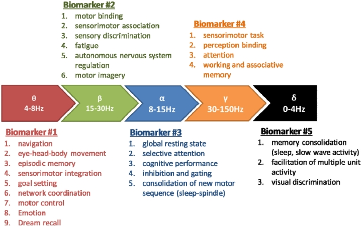 biomarker_sports_performance